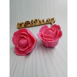Бутон тюльпана Клара,...
